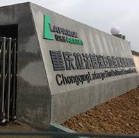 重庆拉法基瑞安地维皮带秤项目,感谢恒标科技技术支持,质量口碑值得推荐